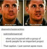 Dumb, Lmao, and Memes: We ore not a teom.  This is o dictatorship  deanwinchesterackles:  watrmelonsarerad  when you're paired with a group of  dumb people for an important project  That caption. I just cannot agree more. sometimes i really wish I let n o o n e ik irl follow this account bc I want to vent sometimes but like sometimes it's about people who follow me and yike - also if ik you irl please don't ask if this is about you bc I probably won't tell you lmao ❤👉😎👉 ~ supernatural supernaturalfandom spn spnfamily samwinchester deanwinchester castiel mishacollins bobbysinger jensenackles jaredpadalecki winchesterbrothers destiel cockles twistandshout twistandshoutfanfic twistandshoutfeels funnysupernatural mishaforpresident
