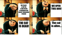 "<p>The cat is&hellip; via /r/MemeEconomy <a href=""http://ift.tt/2Fwpp1S"">http://ift.tt/2Fwpp1S</a></p>: WE PLACE  A CAT IN  A BOX WITH  A RADIOACTIVE  DECAY TRIGGERED  POISON  WE OPEN  THIS BOX!  THE CAT  IS DEAD!  The cat  is alive.. <p>The cat is&hellip; via /r/MemeEconomy <a href=""http://ift.tt/2Fwpp1S"">http://ift.tt/2Fwpp1S</a></p>"