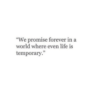 "Life, Forever, and World: ""We promise forever in a  world where even life is  temporary."""