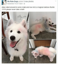 Beautiful, Crying, and Dogs: We Rate Dogs added 3 new photos  September 15 at 7:34pm .  Atlas rolled around in some chalk and now he's a magical rainbow floofer  13/10 please never take a bath i saw a dog so beautiful I started crying??? - Max textpost textposts