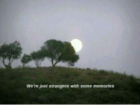 Memories, Strangers, and Just: We 're just strangers with some memories
