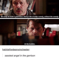 Memes, Angel, and Angels: We really do make agood team. Kind of like a buddycomedy, without the comedy.  Or the buddies.  habitatfordeanwinchester.  sassiest angel in the garrison 👌🏻👌🏻