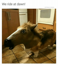 Memes, Dawn, and 🤖: We ride at dawn!  @chaos.reigns Onward to glory my trusty steed (thx for following @chaos.reigns_)