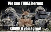 Heroes, Conservative, and Three: We see THREE heroes  SHARE if youagreel