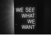 What,  See, and  Want: WE SEE  WHAT  WE  WANT