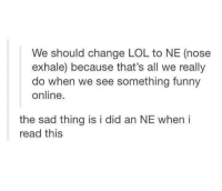 Funny, Lol, and Tumblr: We should change LOL to NE (nose  exhale) because that's all we really  do when we see something funny  online.  the sad thing is i did an NE when i  read this - Smitty Werbenjagermanjensen