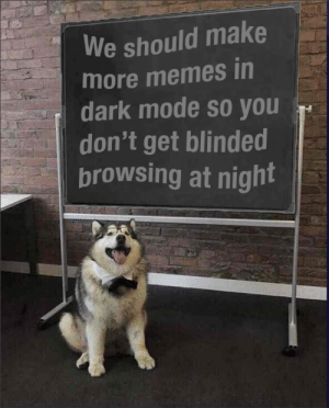 Memes, Tumblr, and Blog: We should make  more memes in  dark mode so you  don't get blinded  browsing at night srsfunny:And that's a fact