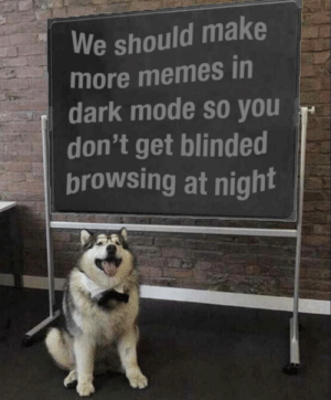 I just came across this: We should make  more memes in  dark mode so you  don't get blinded  browsing at night I just came across this