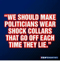 """SOUNDS GOOD TO ME!: """"WE SHOULD MAKE  POLITICIANS WEAR  SHOCK COLLARS  THAT GO OFFEACH  TIME THEY LIE."""" SOUNDS GOOD TO ME!"""