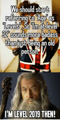 Memes, Badass, and 🤖: We should star  referring Age as  Levels So Tinn at evel  32 sounds more badass  than  lust being an old  ITM LEVEL 2019  THEN! Worst game ever; you only level up once a year and you don't get any stat bonuses once you do.