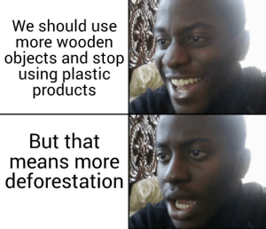 Plastic, Means, and All: We should use  more wooden  objects and stop  using plastic  products  But that  means more  deforestation But all we want is a ban on plastic.