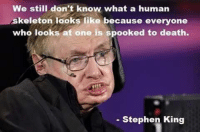 Stephen: We still don't know what a human  skeleton looks like because everyone  who looks at one is spooked to death.  Stephen King