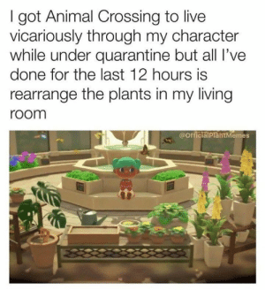 We sure don't have green thumbs here, but we envy people who do! #Memes #Plants #Entertainment: We sure don't have green thumbs here, but we envy people who do! #Memes #Plants #Entertainment
