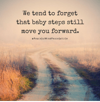 "Community, Memes, and Time: We tend to forget  that baby steps still  move you forward.  c P e a c efulM i n d P e a c efuILife ""We walk as a global community one step at a time."" Michelle Maros Barb Schmidt"