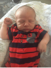 "We thank God for the birth of Josiah Vianney Patrick Hahn (July 5; 7 lbs. 8 oz.; 19.75"") and his subsequent adoption by Gabriel and Sarah Hahn (child #7 for them - grandchild #15 for us)!: We thank God for the birth of Josiah Vianney Patrick Hahn (July 5; 7 lbs. 8 oz.; 19.75"") and his subsequent adoption by Gabriel and Sarah Hahn (child #7 for them - grandchild #15 for us)!"