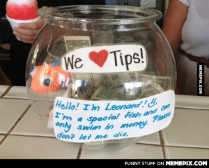 Tip jar at a shave ice stand in Hawaiiomg-humor.tumblr.com: We Tips!  Hello! I'm Leonard!  I'm a  pecial fish and Can  Please  only swim in money.  dont let me die.  FUNNY STUFF ON MEMEPIX.COM  МЕМЕРIХ.Сом Tip jar at a shave ice stand in Hawaiiomg-humor.tumblr.com