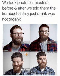Made with @friendofbae 😏: We took photos of hipsters  before & after we told them the  kombucha they just drank was  not organic  gettyimages  gettyi  images  Friend of Bae  getty images Made with @friendofbae 😏