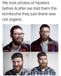 Can't breathe 😂 via @friend_of_bae: We took photos of hipsters  before & after we told them the  kombucha they just drank was  not organic  getty images  getty  mage  61806830  Friend of Bae  ettyimages Can't breathe 😂 via @friend_of_bae