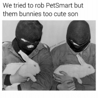 Bunnies, Cute, and Friday: We tried to rob PetSmart but  them bunnies too cute son  speezy  sean Burglary is no joke. Every year 14,879,667 rabbits are stolen from PetSmarts and sold on the black market. SAD! 🙏🏻🐰 (follow @sean_speezy, I won't steal your rabbit... or will I?) • • • pet pets petsmart bunny bunnyrabbit rabbit bunnies rob robbery steal stolen robber burglary meme memes memesdaily dankmemes friday photooftheday picoftheday cute me love seanspeezy lmao lol instagood fridays fridayvibes weekend