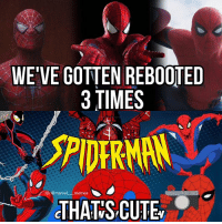 Cute, Meme, and Memes: WE VE GOTTEN REBOOTED  3 TIMES  G@marvel  es  THAT S CUTE Oh, hey, look I finally made a 60s Spider-Man meme! This might be the last time I post these, who knows... Credits to @legoerican557 for helping me with these - Scarlet Spider . . . . . captainamericacivilwar captainamerica civilwar blackpanther blackwidow falcon spiderman spidermanhomecoming vision antman wasp wintersoldier scarletwitch quicksilver hawkeye hulk thor thorragnarok gotg guardiansofthegalaxy doctorstrange avengers avengersinfinitywar marvelmovies defenders defend