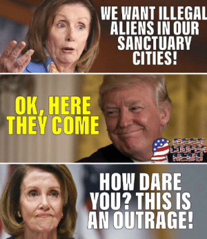 We want illegal aliens in our sanctuary cities...: WE WANT ILLEGAL  ALIENS IN OUR  SANCTUARY  CITIES  OK, HERE  THEV COME  HOW DARE  VOU? THIs is  AN OUTRAGE We want illegal aliens in our sanctuary cities...