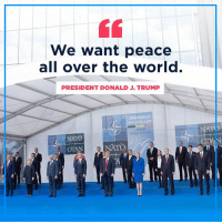 We want PEACE!: We want peace  all over the world.  PRESIDENT DONALD J. TRUMP  BRUSSELS  BRUXELLES  NATO  NATO  TO We want PEACE!