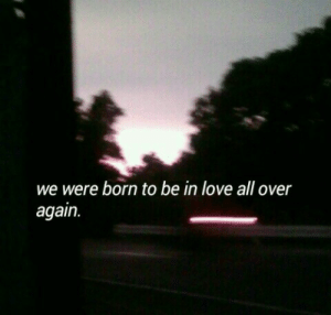 Love, All, and Born: we were born to be in love all over  again.