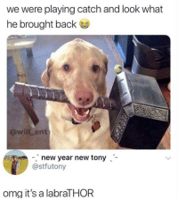 New Year's, Omg, and Beats: we were playing catch and look what  he brought back  @willLent  new year new tony-  @stfutony  omg it's a labraTHOR Beats a stick.