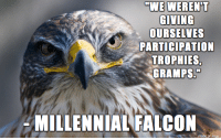 "Funny, Millennials, and Falcons: WE WERENT  GIVING  OURSELVES  PARTICIPATION  TROPHIES,  GRAMPS.""  MILLENNIAL FALCON  made on imgur Millennial Falcon"