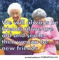 "Friends, Meme, and Senile: We wi always be  riends til we are  old and Senile  hen wexcan be  new friends  you should probably go to TheMetaPicture.com <p>Some Friendships Are Forever.<br/><a href=""http://daily-meme.tumblr.com""><span style=""color: #0000cd;""><a href=""http://daily-meme.tumblr.com/"">http://daily-meme.tumblr.com/</a></span></a></p>"