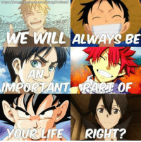 Gif, Memes, and Gifs: WE WILL ALWAYS BE  IMPORTANT OF  YOUR LIFE RIGHT? Please like --> Anime GIFs