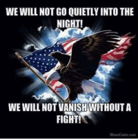 Memes, Fight, and 🤖: WE WILL NOT GO QUIETLY INTO THE  NIGHT!  WE WILL NOT VANISHWITHOUT A  FIGHT!  MemeCenter.com