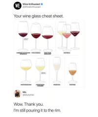 Wine: WE  Wine Enthusiast  @WineEnthusiast  Your wine glass cheat sheet  Traditional  Red Wine  CABERNET SAUVIGNON SYRAH/SHIRAZ  PINOT NOIR  BURGUNDY  UNIVERSAL  BORDEAUX  Traditional  White Wine  WHITE BURGUNDY  SPARKLING  FORTIFIED  CHARDONNAY  VIOGNIER  Mo.  @MoAshlei  Wow. Thank you  I'm still pouring it to the rim.