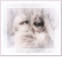 """Alive, Birthday, and Bones: We wish to Thank Ermelinda, our friend to this page, for our reawakening to this story once posted...  The Blind Man And The Talking Dog   There was once an old man whom Fortune (whose own eyes are bandaged) had deprived of his sight. She had taken his hearing also, so that he was deaf. Poor he had always been, and as Time had stolen his youth and strength from him, they had only left a light burden for death to carry when he should come the old man's way.  But Love (who is blind also) had given the Blind Man a Dog, who led him out in the morning to a seat in the sun under the crab-tree, and held his hat for wayside alms, and brought him safely home at sunset.  The Dog was wise and faithful–as dogs often are–but the wonder of him was that he could talk. In which will be seen the difference between dogs and men, most of whom can talk; whilst it is a matter for admiration if they are wise and faithful.  One day the Mayor's little son came down the road, and by the hand he held his playmate Aldegunda.  """"Give the poor blind man a penny,"""" said she.  """"You are always wanting me to give away my money,"""" replied the boy peevishly. """"It is well that my father is the richest man in the town, and that I have a whole silver crown yet in my pocket.""""  But he put the penny into the hat which the Dog held out, and the Dog gave it to his master.  """"Heaven bless you,"""" said the Blind Man.  """"Amen,"""" said the Dog.  """"Aldegunda! Aldegunda!"""" cried the boy, dancing with delight """"Here's a dog who can talk. I would give my silver crown for him. Old man, I say, old man! Will you sell me your dog for a silver crown?""""  """"My master is deaf as well as blind,"""" said the Dog.  """"What a miserable old creature he must be,"""" said the boy compassionately.  """"Men do not smile when they are miserable, do they?"""" said the Dog; """"and my master smiles sometimes–when the sun warms right through our coats to our bones; when he feels the hat shake against his knee as the pennies drop in; and whe"""