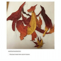 weal heartonedirection:  Charizard made from autumn leaves magical