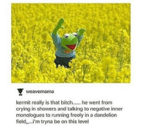 Crying, Running, and Dandelion: weavemama  kermit really is that biche went from  crying in showers and talking to negative inner  monologues to running freely in a dandelion  field,..i'm tryna be on this level <p>We all can be Kermit!</p>