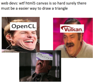 Wtf, Canvas, and What Is: web devs: wtf html5 canvas is so hard surely there  must be a easier way to draw a triangle  OpenCL  Vulkan what is vector even supposed to be ?