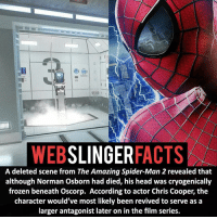 Frozen, Memes, and Spider: WEB  SLINGER  FACTS  A deleted scene from The Amazing Spider-Man 2 revealed that  although Norman Osborn had died, his head was cryogenically  frozen beneath Oscorp. According to actor Chris Cooper, the  character would've most likely been revived to serve as a  larger antagonist later on in the film series. ▲▲ - Hopefully Marvel's Spider-Man villains do the characters justice!- My other IG accounts @factsofflash @yourpoketrivia @facts_of_heroes ⠀⠀⠀⠀⠀⠀⠀⠀⠀⠀⠀⠀⠀⠀⠀⠀⠀⠀⠀⠀⠀⠀⠀⠀⠀⠀⠀⠀⠀⠀⠀⠀⠀⠀⠀⠀ ⠀⠀----------------------- spiderman peterparker tomholland marvelfacts spidermanfacts webslingerfacts venom carnage avengers xmen justiceleague marvel homecoming tobeymaguire andrewgarfield ironman spiderman2099 civilwar auntmay like gwenstacy maryjane deadpool miguelohara hobgoblin milesmorales like4like