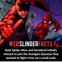 ▲▲ - Spider-Man and Daredevil! - My other IG accounts @factsofflash @yourpoketrivia @facts_of_heroes ⠀⠀⠀⠀⠀⠀⠀⠀⠀⠀⠀⠀⠀⠀⠀⠀⠀⠀⠀⠀⠀⠀⠀⠀⠀⠀⠀⠀⠀⠀⠀⠀⠀⠀⠀⠀ ⠀⠀----------------------- spiderman peterparker tomholland marvelfacts spidermanfacts webslingerfacts venom carnage avengers xmen justiceleague marvel homecoming tobeymaguire andrewgarfield ironman spiderman2099 civilwar auntmay like gwenstacy maryjane deadpool miguelohara hobgoblin milesmorales like4like: WEB  SLINGER  FACTS  Both Spider-Man and Daredevil initially  refused to join the Avengers because they  wanted to fight crime on a small scale. ▲▲ - Spider-Man and Daredevil! - My other IG accounts @factsofflash @yourpoketrivia @facts_of_heroes ⠀⠀⠀⠀⠀⠀⠀⠀⠀⠀⠀⠀⠀⠀⠀⠀⠀⠀⠀⠀⠀⠀⠀⠀⠀⠀⠀⠀⠀⠀⠀⠀⠀⠀⠀⠀ ⠀⠀----------------------- spiderman peterparker tomholland marvelfacts spidermanfacts webslingerfacts venom carnage avengers xmen justiceleague marvel homecoming tobeymaguire andrewgarfield ironman spiderman2099 civilwar auntmay like gwenstacy maryjane deadpool miguelohara hobgoblin milesmorales like4like