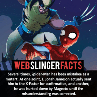J. Jonah Jameson, Memes, and Spider: WEB  SLINGER  FACTS  Several times, Spider-Man has been mistaken as a  mutant. At one point, J. Jonah Jameson actually sent  him to the X-Factor for confirmation, and another,  he was hunted down by Magneto until the  misunderstanding was corrected. ▲▲ - Who is your favourite X-Men? - My other IG accounts @factsofflash @yourpoketrivia @facts_of_heroes ⠀⠀⠀⠀⠀⠀⠀⠀⠀⠀⠀⠀⠀⠀⠀⠀⠀⠀⠀⠀⠀⠀⠀⠀⠀⠀⠀⠀⠀⠀⠀⠀⠀⠀⠀⠀ ⠀⠀----------------------- spiderman peterparker tomholland marvelfacts spidermanfacts webslingerfacts venom carnage avengers xmen justiceleague marvel homecoming tobeymaguire andrewgarfield ironman spiderman2099 civilwar auntmay like gwenstacy maryjane deadpool miguelohara hobgoblin milesmorales like4like