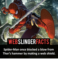 Memes, Spider, and Deadpool: WEB  SLINGER  FACTS  Spider-Man once blocked a blow from  Thor's hammer by making a web shield. ▲▲ - They need to have some banter in Infinity War! - My other IG accounts @factsofflash @yourpoketrivia @facts_of_heroes ⠀⠀⠀⠀⠀⠀⠀⠀⠀⠀⠀⠀⠀⠀⠀⠀⠀⠀⠀⠀⠀⠀⠀⠀⠀⠀⠀⠀⠀⠀⠀⠀⠀⠀⠀⠀ ⠀⠀----------------------- spiderman peterparker tomholland marvelfacts spidermanfacts webslingerfacts venom carnage avengers xmen justiceleague marvel homecoming tobeymaguire andrewgarfield ironman spiderman2099 civilwar auntmay like gwenstacy maryjane deadpool miguelohara hobgoblin milesmorales like4like