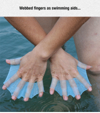 Tumblr, Blog, and Swimming: Webbed fingers as swimming aids... epicjohndoe:  Swimming Aids