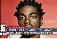Circumcision Is Overrated,: @webewildin  D BREAKING NEWS  ARRESTED AGAIN!  KODAK BLACK NEWS  Caught smuggling a baby shrimp in his pants Circumcision Is Overrated,