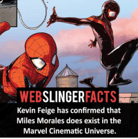 ▲▲ - Are you excited?! - My other IG accounts @factsofflash @yourpoketrivia @facts_of_heroes ⠀⠀⠀⠀⠀⠀⠀⠀⠀⠀⠀⠀⠀⠀⠀⠀⠀⠀⠀⠀⠀⠀⠀⠀⠀⠀⠀⠀⠀⠀⠀⠀⠀⠀⠀⠀ ⠀⠀----------------------- spiderman peterparker tomholland marvelfacts spidermanfacts webslingerfacts venom carnage avengers xmen justiceleague marvel homecoming tobeymaguire andrewgarfield ironman spiderman2099 civilwar auntmay like gwenstacy maryjane deadpool miguelohara hobgoblin milesmorales like4like: WEBSLINGERFACTS  Kevin Feige has confirmed that  Miles Morales does exist in the  Marvel Cinematic Universe. ▲▲ - Are you excited?! - My other IG accounts @factsofflash @yourpoketrivia @facts_of_heroes ⠀⠀⠀⠀⠀⠀⠀⠀⠀⠀⠀⠀⠀⠀⠀⠀⠀⠀⠀⠀⠀⠀⠀⠀⠀⠀⠀⠀⠀⠀⠀⠀⠀⠀⠀⠀ ⠀⠀----------------------- spiderman peterparker tomholland marvelfacts spidermanfacts webslingerfacts venom carnage avengers xmen justiceleague marvel homecoming tobeymaguire andrewgarfield ironman spiderman2099 civilwar auntmay like gwenstacy maryjane deadpool miguelohara hobgoblin milesmorales like4like