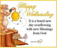 Wednesday: Wednesday  It is a brand new  day overflowing  with new Blessings  from God  Think Positive Words