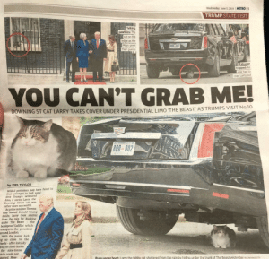 Blackpeopletwitter, Donald Trump, and Funny: Wednesday, June 5, 2019  METRO 3  TRUMP STATE VISIT  10  Talking  pawlitics: The  cat on the  ledge as the  Mays greet  their guests  800-002  Mouser  trapped: An  aide had to  coax Larry out  YOU CAN'T GRAB ME!  DOWNING ST CAT LARRY TAKES COVER UNDER PRESIDENTIAL LIMO 'THE BEAST AS TRUMPS VISIT No.10  800-002  by JOEL TAYLOR  WHILE protesters may have failed in  their attempts to halt presi-  dent Trump's armoured  limo, it seems Larry the  Downing Street cat was  rather more successful  As prime minister Theresa  May hosted Donald Trump  inside, Larry took shelter  from the rain by ducking  under The Beast the  bombproof Cadillac which  transports the president  around London  With the pussy lurk-  ng so close to the  heels-after initially  ying to climb inside  the nine-tonne  icle could not  moved. How-  PusS under boot: Larry the tabby cat sheltered from the rain by hiding under the trunk of The Beast yesterday  REX/WENN/GETTY Puss N Boot