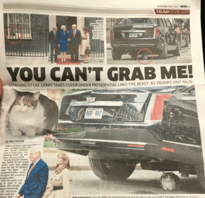 Donald Trump, Funny, and Pussy: Wednesday, June 5, 2019  METRO  3  TRUMP STATE VISIT  10  Talking  pawlitics: The  cat on the  ledge as the  Mays greet  their guests  800-602  Mouser  trapped: An  aide had to  coax Larry out  YOU CAN'T GRAB ME!  DOWNING ST CAT LARRY TAKES COVER UNDER PRESIDENTIAL LIMO 'THE BEAST AS TRUMPS VISIT No.10  800-002  by JOEL TAYLOR  WHILE protesters may have failed in  their attempts to halt presi-  dent Trump's armoured  limo, it seems Larry the  Downing Street cat was  rather more successful  As prime minister Theresa  May hosted Donald Trump  inside, Larry took shelter  from the rain by ducking  under The Beast-the  bombproof Cadillac which  transports the president  around London  With the pussy lurk-  ng so close to the  heels-after initially  ying to climb inside  the nine-tonne  icle could not  moved. How-  PUSS under boot: L arry the tabby cat sheltered from the rain by hiding under the trunk of The Beast yesterday  REX/WENN/GETTY Well played Larry.