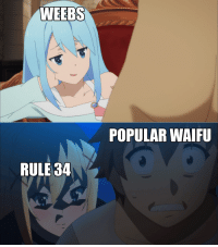 Weebs: WEEBS  POPULAR WAIFU  RULE 34