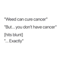 "Weed, Cancer, and Marijuana: ""Weed can cure cancer""  ""But... you don't have cancer""  Thits blunt]  ""... Exactly"" Exactly... 😎"