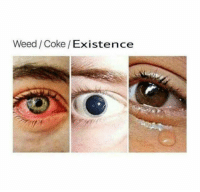 Memes, Weed, and 🤖: Weed/Coke/Existence